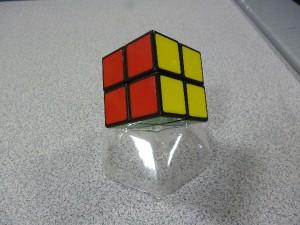 P1020619(1)